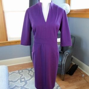 Adrianna Papell Eggplant V Neck Dress Size 14P
